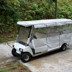 Buggy service