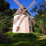 Le moulin dans le parc verdoyant et fleuri