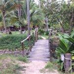 Photo de Sai Nuan Beach