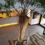 Photo of Devero Hotel & SPA