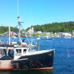 A glimpse of BoothBay Harbor. A true 'working' harbor.