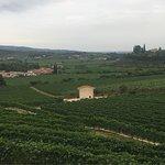 Agriturismo Costa degli Ulivi Foto
