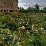 Egeskov Castle Photo