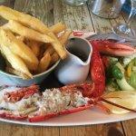 The un-veined little lobster