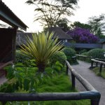 Foto de Lake Nakuru Lodge