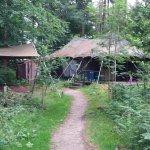 D15 woodland tent