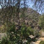 Photo of Sequoia Village Inn