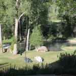 Foto de Antlers on the Creek Bed & Breakfast
