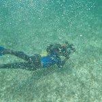Foto de The Original Snorkeling Adventure