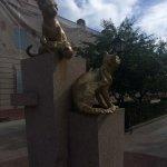 Photo of Siberian Cats Park