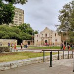 the alamo, settled in downtown