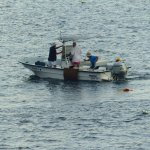 zoomed in photo of fisherman retrieving their lobster traps