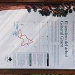 Grant tree trail map