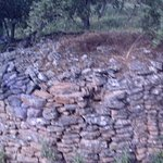 archaelogical site on premises