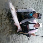 44 lb King Salmon (Once a season fish ended up on my line)