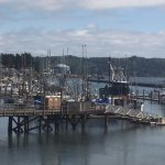 View from Local Ocean Seafoods