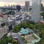View from 27th floor room over Hie Shrine