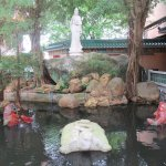 Another pond at the Yuen Yuen Institute.