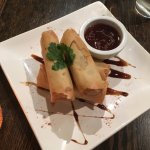 Vegetarian spring rolls with a thick,soy and ginger dipping sauce