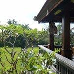 Balcony over rice field.