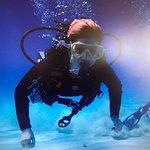 Photo of Acqua Life Dive Center S. L.