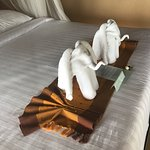 Clever elephant towels