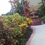 Photo de Hampton Inn & Suites St. Augustine - Vilano Beach