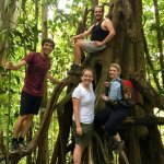 Our group posing in a tree