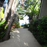The view as you walk down to the pool/beach/restuarant