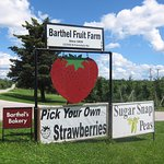 Barthel Fruit Farm