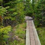 Foto de Irving Nature Park
