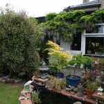 Patio, koi pond and south facing garden with seating for you to relax and enjoy