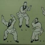wu xing, los cinco animales, la antesala del Tai Chi Chuan