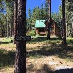 Chipmunk Cabin
