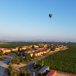 Photo de A Grape Escape Balloon Adventure