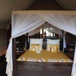 Photo of Lake Ndutu Luxury Tented Lodge