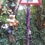 Teddies and toys tied to the trees, bushes and fences at the base of Glastonbury Tor.