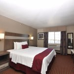 Whirlpool Suite (One King Bed)