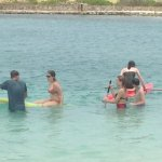 Paddle boards at Parrot Tree Beach Resort