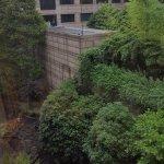 3rd floor roof top garden