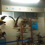 Yashinomi Museum Photo