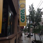 Visit Cora on Dresden Row right off of Spring Garden.
