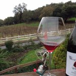 2013 Wet Kiss Pinot Nior Russian River Valley and the view at Woodenhead Vintners in Santa Rosa.