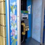 A real working pay phone!