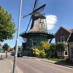 Windmill in the town