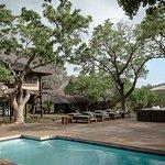 Foto de Zebra Hills Safari Lodge