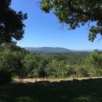 Photo de Bellone en Provence