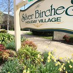 Silver Birches Holiday Village