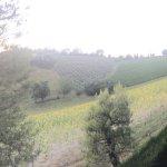 Фотография Il Giardino dei Sapori