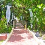 BlueBay Villas Doradas Adults Only-billede
